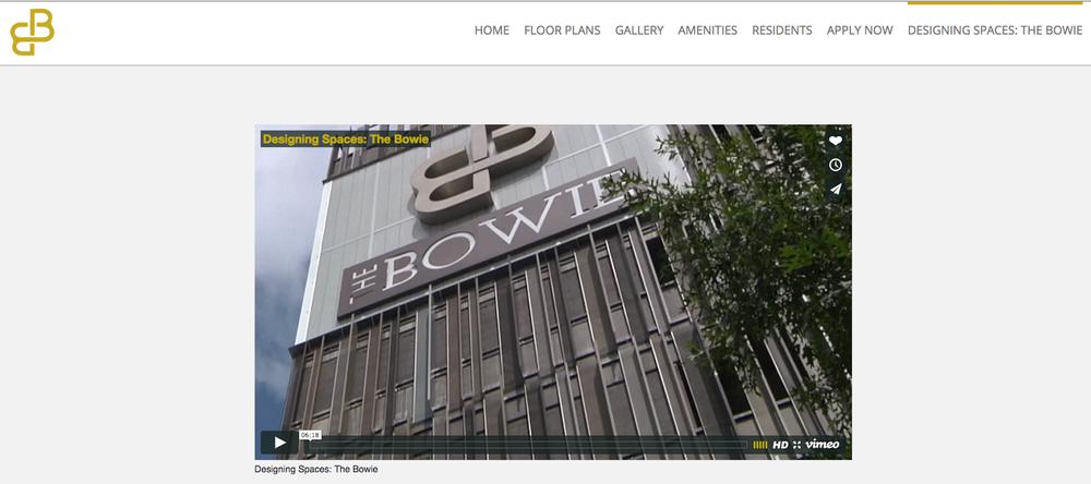 The Bowie Video screenshot