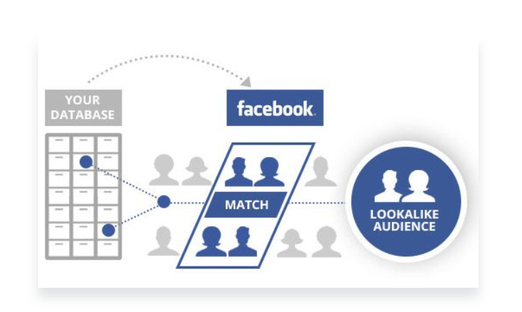 Facebook Lookalike Audience graphic.