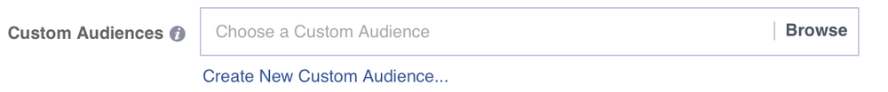 Facebook custom audiences selection screenshot
