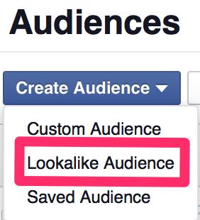 Facebook Lookalike Audience menu screenshot
