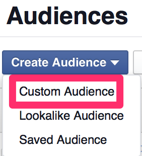 Facebook custom audience menu screenshot