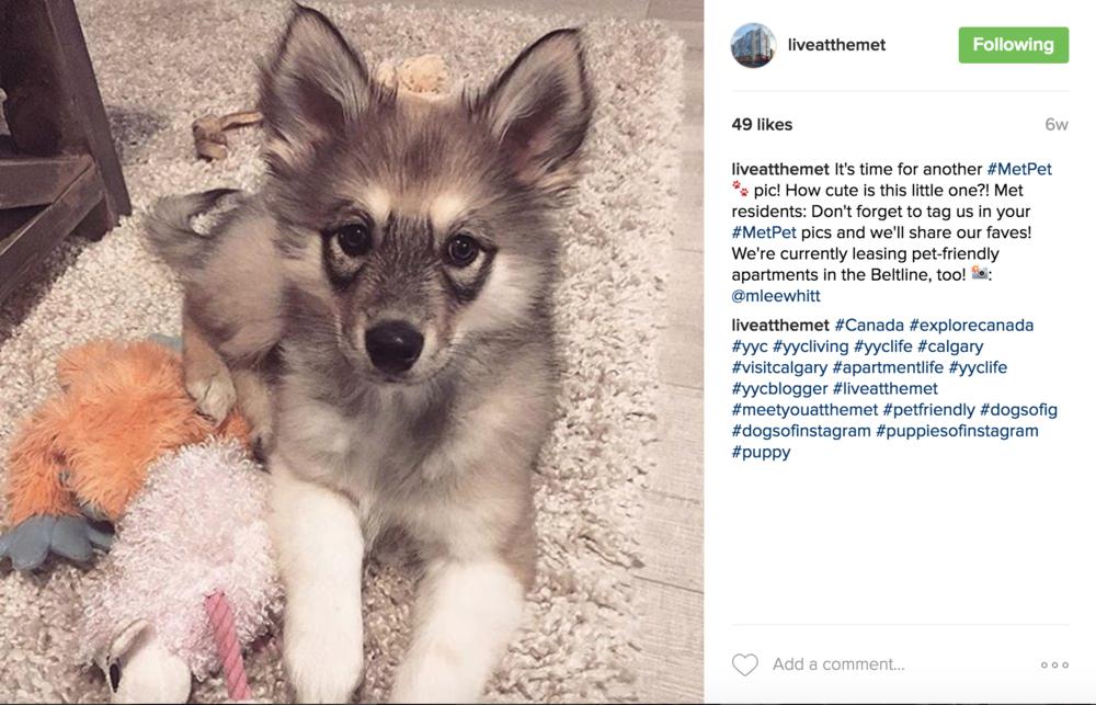 The Metropolitan Instagram post